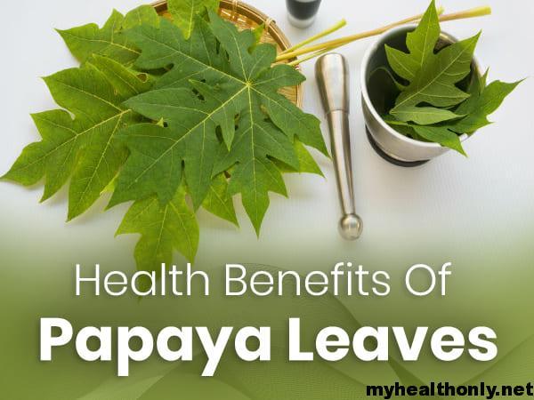 Benefits of Papaya Leaf Juice