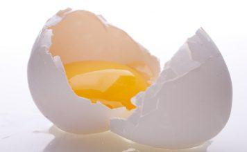 Benefits of Egg Yolk