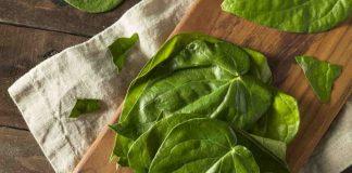 Benefits of Betel Leaves